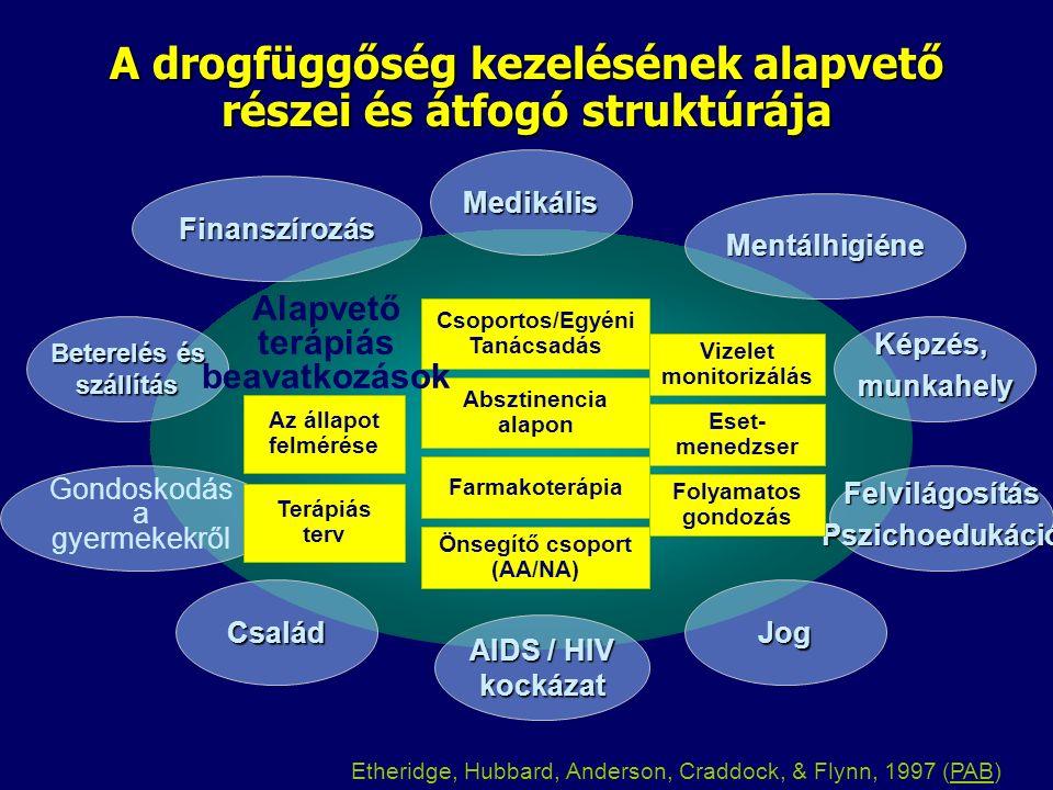 A drogfüggőség kezelésének alapvető részei és átfogó struktúrája Medikális Mentálhigiéne Képzés,munkahely FelvilágosításPszichoedukáció Jog AIDS / HIV kockázat Finanszírozás Beterelés és szállítás Gondoskodás a gyermekekről Család Folyamatos gondozás Eset- menedzser Vizelet monitorizálás Önsegítő csoport (AA/NA) Farmakoterápia Csoportos/Egyéni Tanácsadás Absztinencia alapon Az állapot felmérése Terápiás terv Alapvető terápiás beavatkozások Etheridge, Hubbard, Anderson, Craddock, & Flynn, 1997 (PAB)