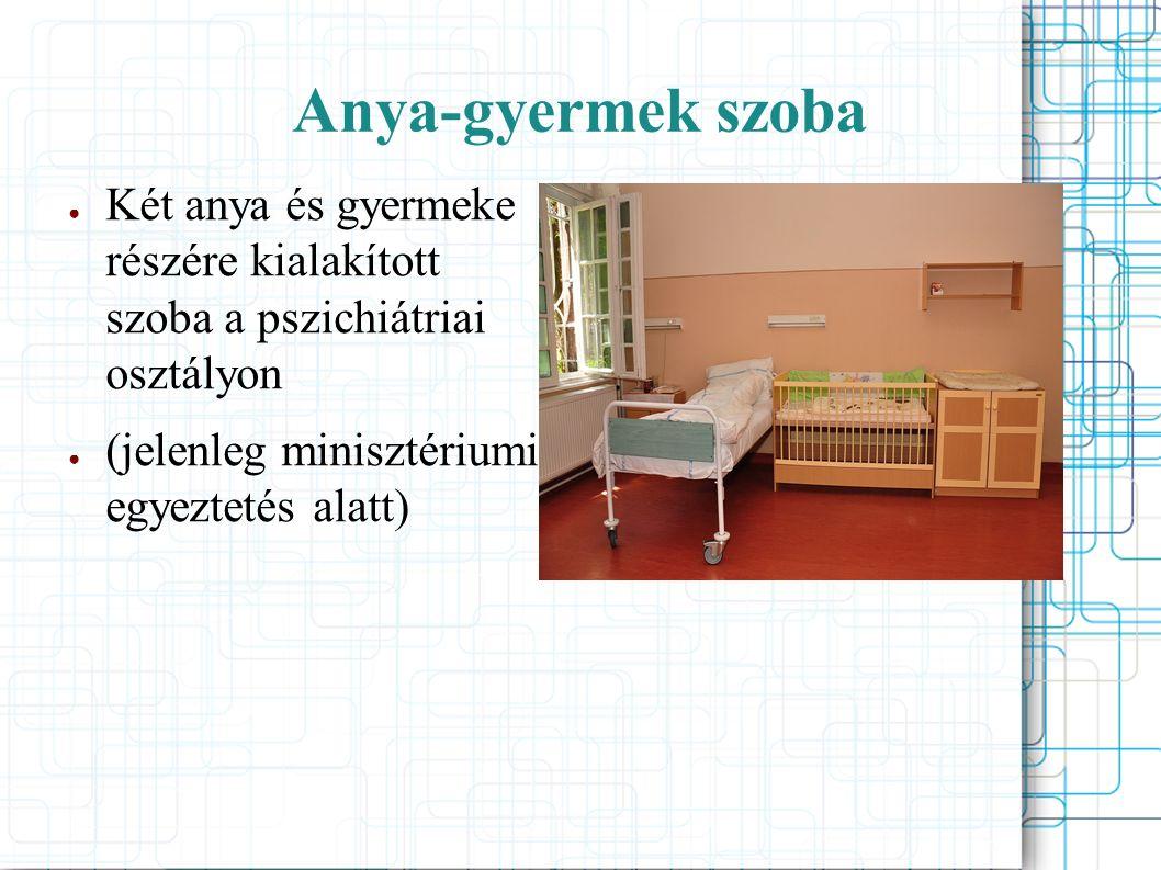 Anya-gyermek szoba ● Két anya és gyermeke részére kialakított szoba a pszichiátriai osztályon ● (jelenleg minisztériumi egyeztetés alatt)