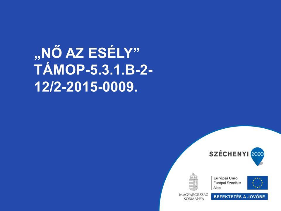 """""""NŐ AZ ESÉLY TÁMOP-5.3.1.B-2- 12/2-2015-0009."""