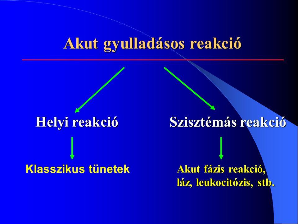 Akut gyulladásos reakció Akut gyulladásos reakció Helyi reakció Szisztémás reakció Klasszikus tünetek Akut fázis reakció, láz, leukocitózis, stb.