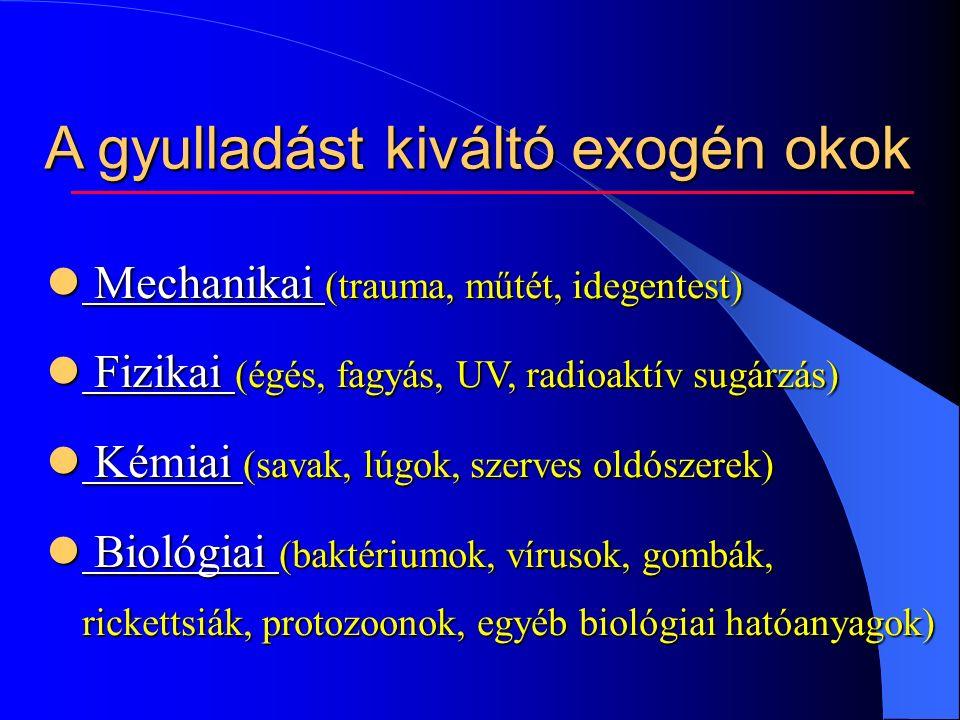 A gyulladást kiváltó exogén okok Mechanikai (trauma, műtét, idegentest) Mechanikai (trauma, műtét, idegentest) Fizikai (égés, fagyás, UV, radioaktív sugárzás) Fizikai (égés, fagyás, UV, radioaktív sugárzás) Kémiai (savak, lúgok, szerves oldószerek) Kémiai (savak, lúgok, szerves oldószerek) Biológiai (baktériumok, vírusok, gombák, rickettsiák, protozoonok, egyéb biológiai hatóanyagok) Biológiai (baktériumok, vírusok, gombák, rickettsiák, protozoonok, egyéb biológiai hatóanyagok)