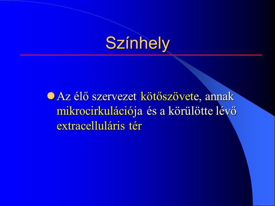 Színhely Az élő szervezet kötőszövete, annak mikrocirkulációja és a körülötte lévő extracelluláris tér Az élő szervezet kötőszövete, annak mikrocirkulációja és a körülötte lévő extracelluláris tér