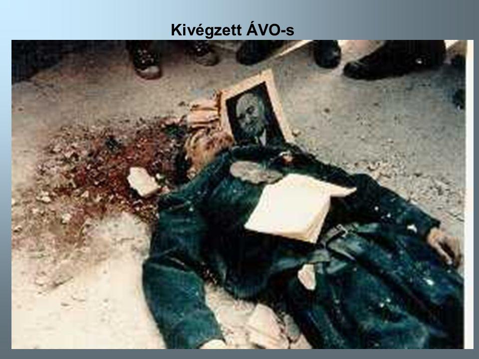 52 Kivégzett ÁVO-s