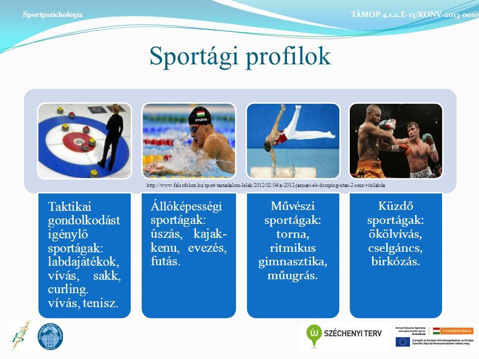 Sportági profilok Taktikai gondolkodást igénylő sportágak: labdajátékok, vívás, sakk, curling.