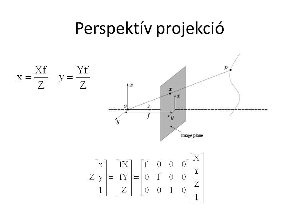 Perspektív projekció