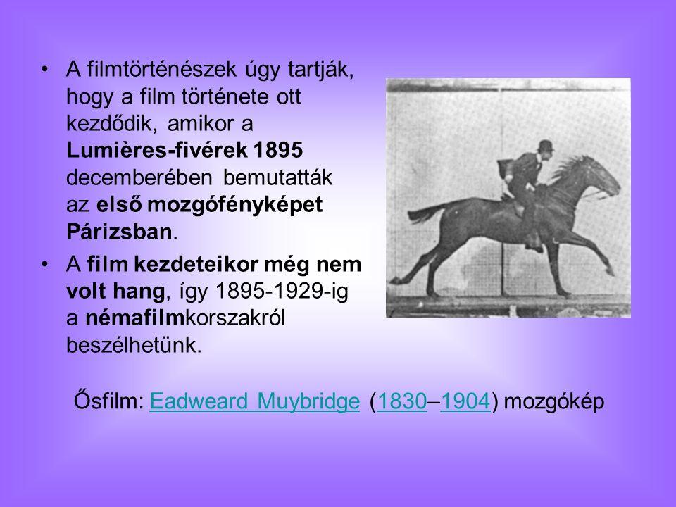 A filmtörténészek úgy tartják, hogy a film története ott kezdődik, amikor a Lumières-fivérek 1895 decemberében bemutatták az első mozgófényképet Páriz