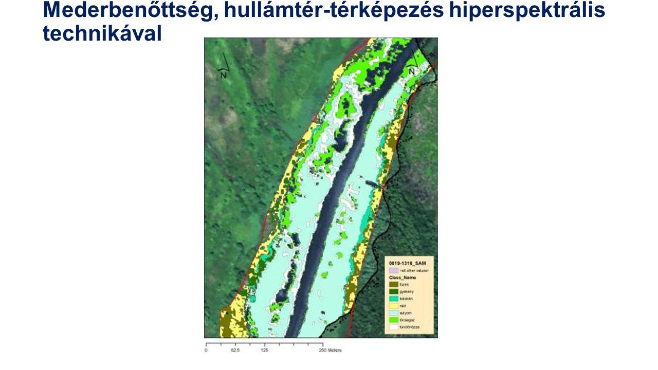 Mederbenőttség, hullámtér-térképezés hiperspektrális technikával