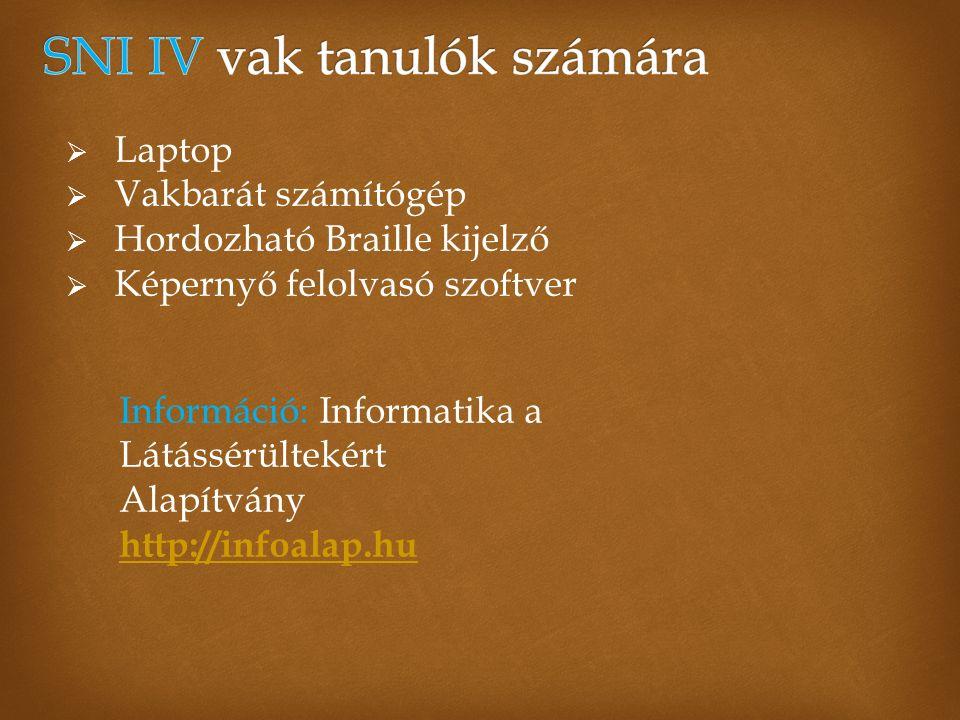  Laptop  Vakbarát számítógép  Hordozható Braille kijelző  Képernyő felolvasó szoftver Információ: Informatika a Látássérültekért Alapítvány http://infoalap.hu