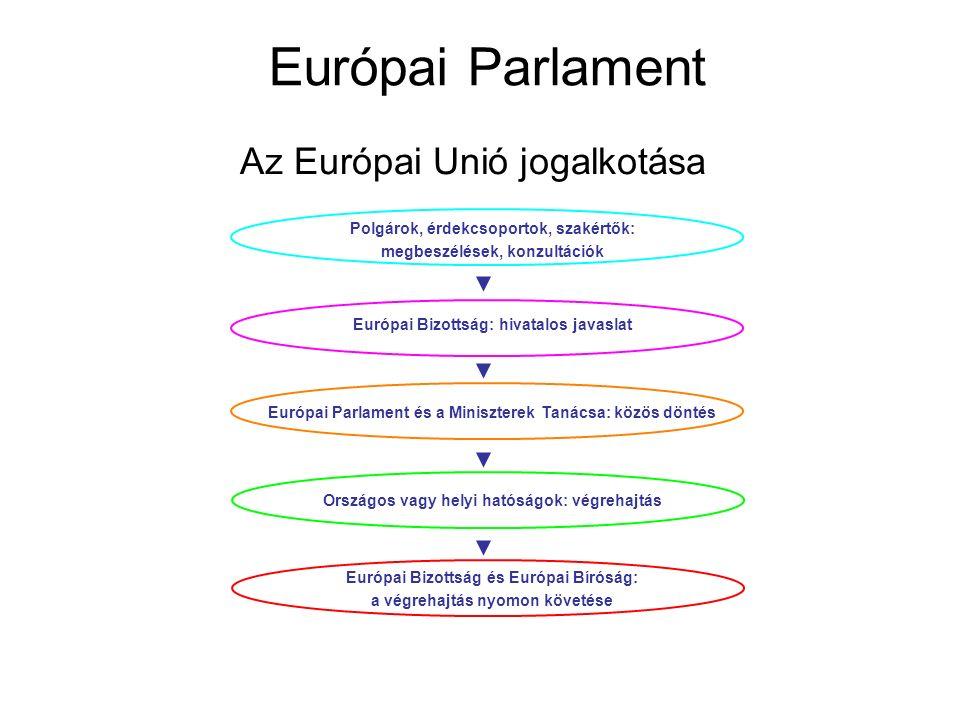 Európai Parlament Az Európai Unió jogalkotása Polgárok, érdekcsoportok, szakértők: megbeszélések, konzultációk Európai Bizottság: hivatalos javaslat Európai Parlament és a Miniszterek Tanácsa: közös döntés Európai Bizottság és Európai Bíróság: a végrehajtás nyomon követése Országos vagy helyi hatóságok: végrehajtás