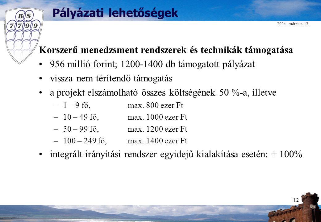2004. március 17. 12 Pályázati lehetőségek Korszerű menedzsment rendszerek és technikák támogatása 956 millió forint; 1200-1400 db támogatott pályázat