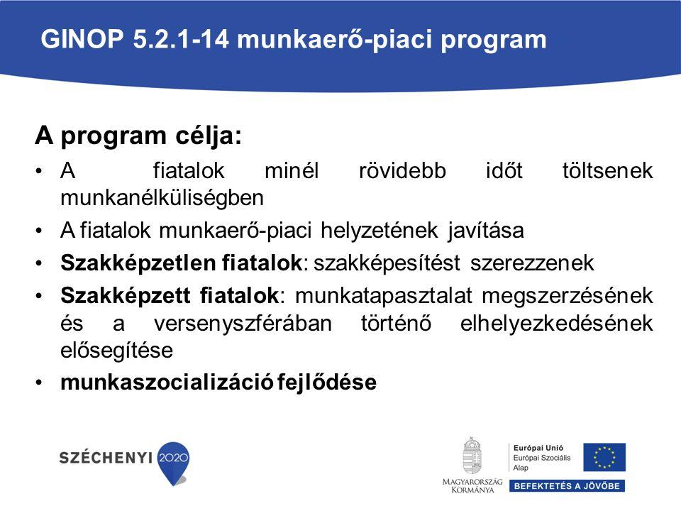 GINOP 5.2.1-14 munkaerő-piaci program A program célja: A fiatalok minél rövidebb időt töltsenek munkanélküliségben A fiatalok munkaerő-piaci helyzetének javítása Szakképzetlen fiatalok: szakképesítést szerezzenek Szakképzett fiatalok: munkatapasztalat megszerzésének és a versenyszférában történő elhelyezkedésének elősegítése munkaszocializáció fejlődése
