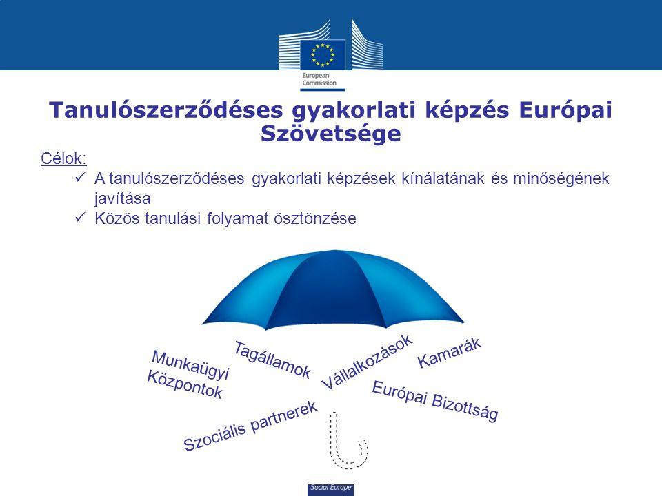 Social Europe Tanulószerződéses gyakorlati képzés Európai Szövetsége Célok: A tanulószerződéses gyakorlati képzések kínálatának és minőségének javítása Közös tanulási folyamat ösztönzése Szociális partnerek Tagállamok Vállalkozások Európai Bizottság Kamarák Munkaügyi Központok