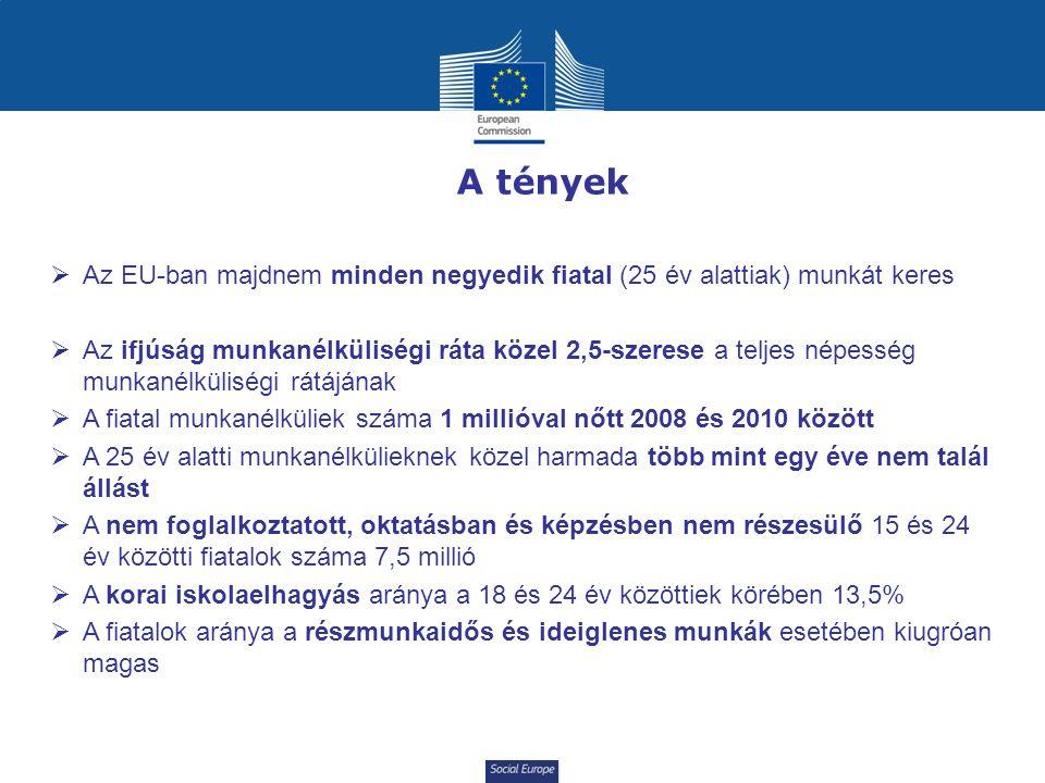 Social Europe A tények  Az EU-ban majdnem minden negyedik fiatal (25 év alattiak) munkát keres  Az ifjúság munkanélküliségi ráta közel 2,5-szerese a teljes népesség munkanélküliségi rátájának  A fiatal munkanélküliek száma 1 millióval nőtt 2008 és 2010 között  A 25 év alatti munkanélkülieknek közel harmada több mint egy éve nem talál állást  A nem foglalkoztatott, oktatásban és képzésben nem részesülő 15 és 24 év közötti fiatalok száma 7,5 millió  A korai iskolaelhagyás aránya a 18 és 24 év közöttiek körében 13,5%  A fiatalok aránya a részmunkaidős és ideiglenes munkák esetében kiugróan magas