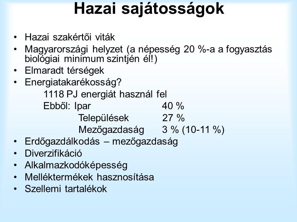 Hazai sajátosságok Hazai szakértői viták Magyarországi helyzet (a népesség 20 %-a a fogyasztás biológiai minimum szintjén él!) Elmaradt térségek Energ