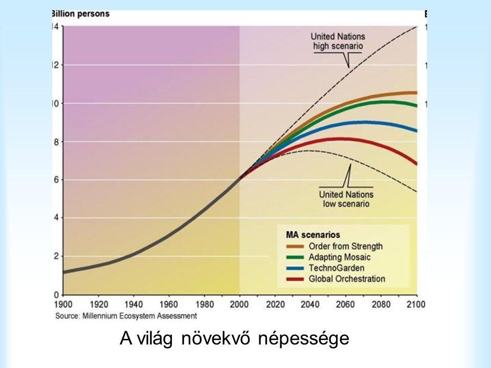 A világ növekvő népessége
