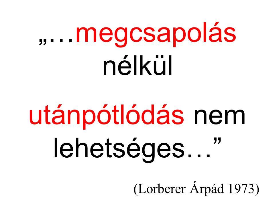 """""""…megcsapolás nélkül utánpótlódás nem lehetséges… (Lorberer Árpád 1973)"""