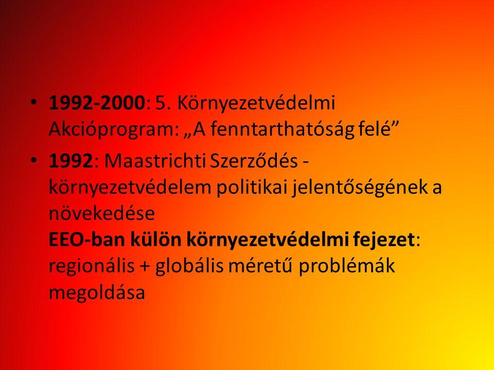 """1992-2000: 5. Környezetvédelmi Akcióprogram: """"A fenntarthatóság felé"""" 1992: Maastrichti Szerződés - környezetvédelem politikai jelentőségének a növeke"""