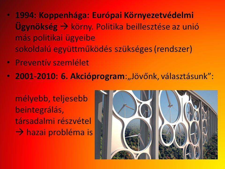 1994: Koppenhága: Európai Környezetvédelmi Ügynökség  körny. Politika beillesztése az unió más politikai ügyeibe sokoldalú együttműködés szükséges (r