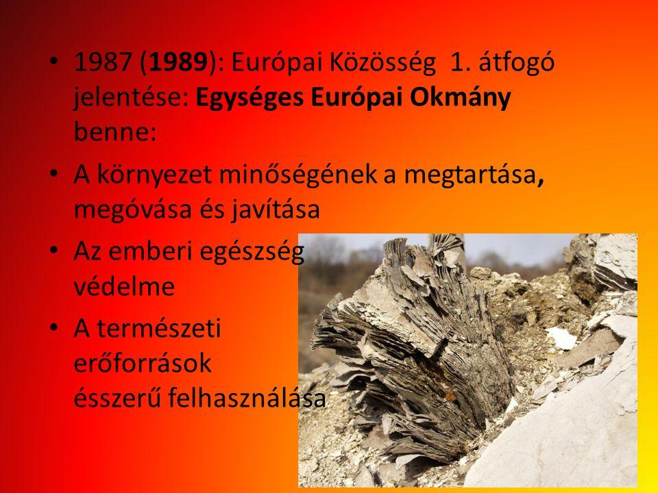 1987 (1989): Európai Közösség 1. átfogó jelentése: Egységes Európai Okmány benne: A környezet minőségének a megtartása, megóvása és javítása Az emberi
