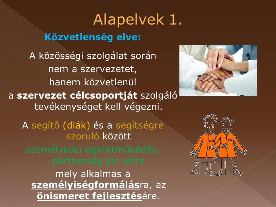 Közvetlenség elve: A közösségi szolgálat során nem a szervezetet, hanem közvetlenül a szervezet célcsoportját szolgáló tevékenységet kell végezni.