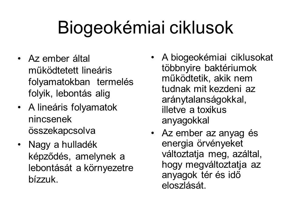 Biogeokémiai ciklusok Az ember által működtetett lineáris folyamatokban termelés folyik, lebontás alig A lineáris folyamatok nincsenek összekapcsolva