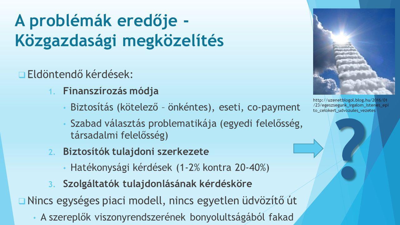 A problémák eredője - Közgazdasági megközelítés  Eldöntendő kérdések: 1.