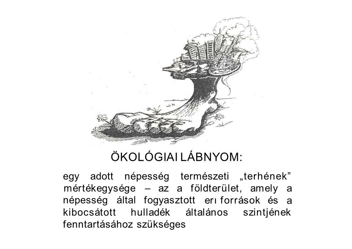 Az ökológiai társadalom jellemzıi A népesség nem haladja meg a terület eltartóképességét (az ökológiai lábnyom </= az ökológiai potenciállal), Nem termel lebonthatatlan hulladékot, Nem változtatja meg lényegesen a természetes életteret (különös tekintettel az ökológiai potenciálra).