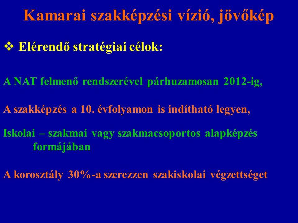Kamarai szakképzési vízió, jövőkép  Elérendő stratégiai célok: A NAT felmenő rendszerével párhuzamosan 2012-ig, A szakképzés a 10. évfolyamon is indí