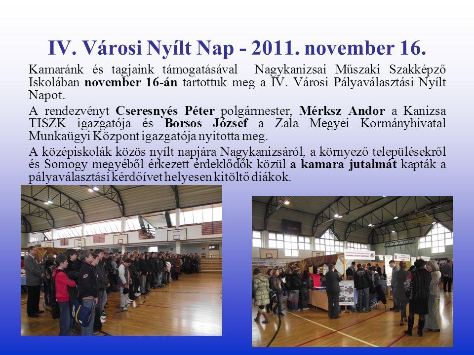 IV. Városi Nyílt Nap - 2011. november 16.