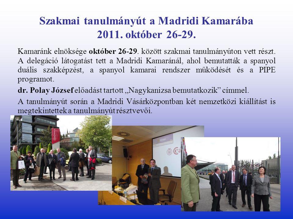 Szakmai tanulmányút a Madridi Kamarába 2011. október 26-29.
