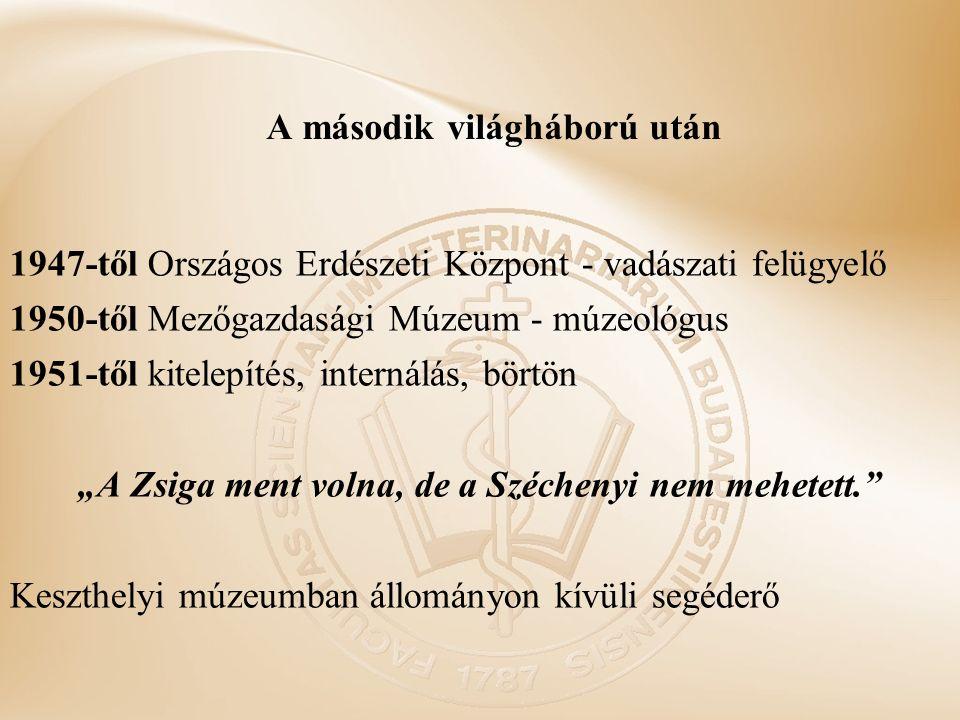 """A második világháború után 1947-től Országos Erdészeti Központ - vadászati felügyelő 1950-től Mezőgazdasági Múzeum - múzeológus 1951-től kitelepítés, internálás, börtön """"A Zsiga ment volna, de a Széchenyi nem mehetett. Keszthelyi múzeumban állományon kívüli segéderő"""