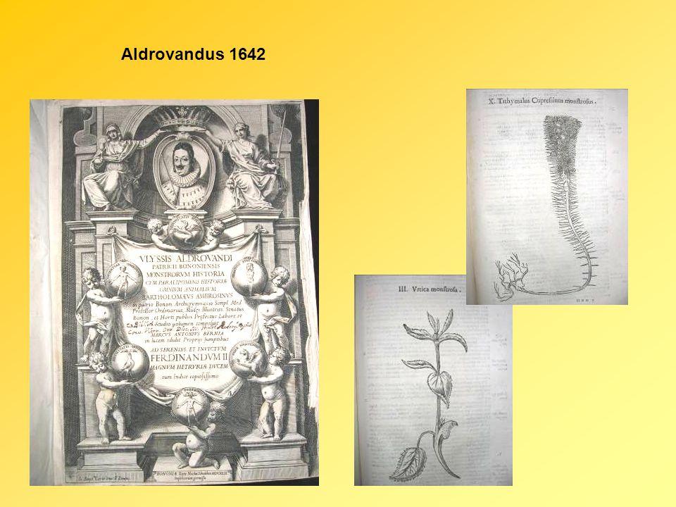 Aldrovandus 1642