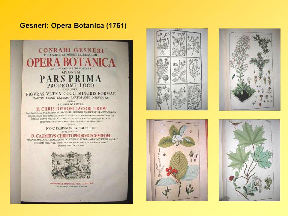 Gesneri: Opera Botanica (1761)