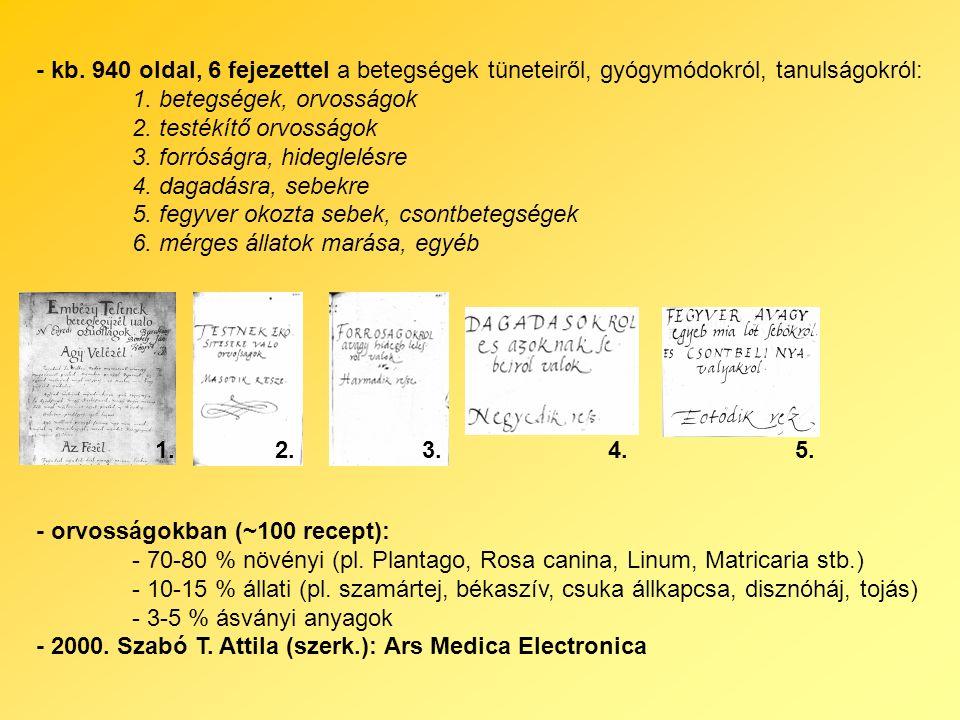 - kb. 940 oldal, 6 fejezettel a betegségek tüneteiről, gyógymódokról, tanulságokról: 1.