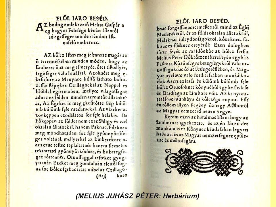 (MELIUS JUHÁSZ PÉTER: Herbárium)