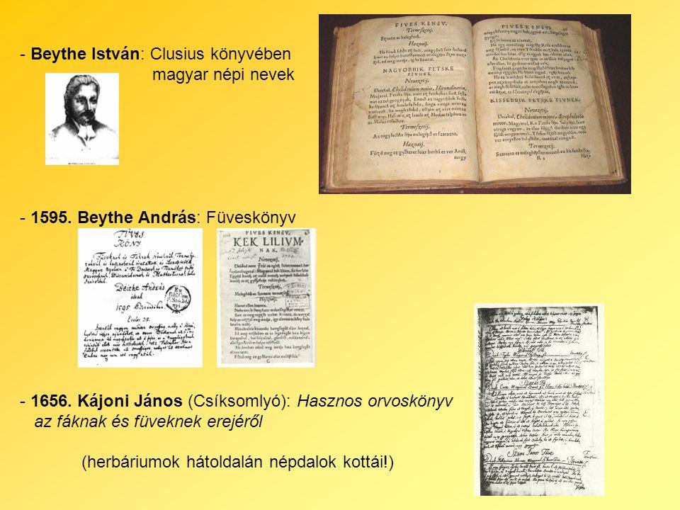 - Beythe István: Clusius könyvében magyar népi nevek - 1595.