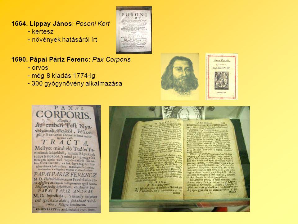 1664. Lippay János: Posoni Kert - kertész - növények hatásáról írt 1690.