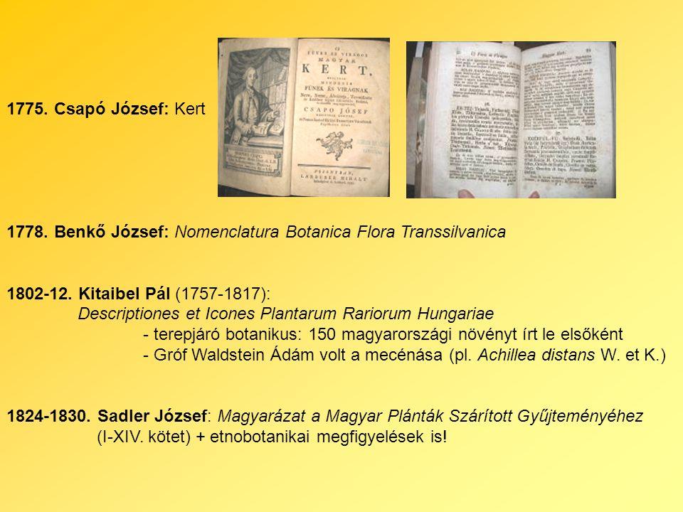 1775. Csapó József: Kert 1778. Benkő József: Nomenclatura Botanica Flora Transsilvanica 1802-12.