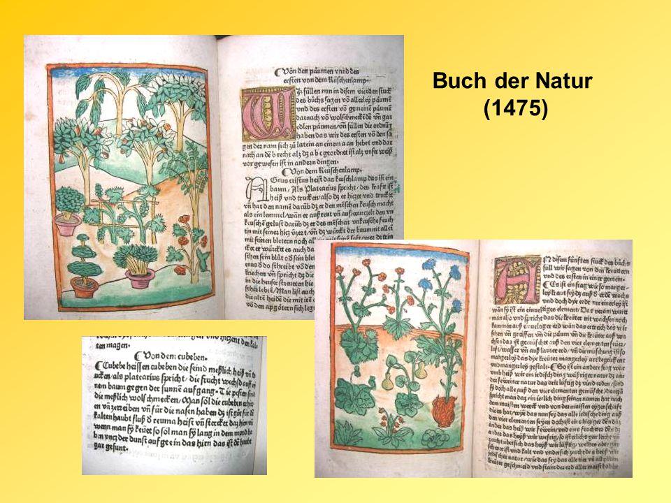 Buch der Natur (1475)