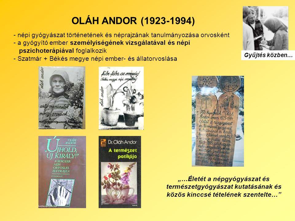 """OLÁH ANDOR (1923-1994) - népi gyógyászat történetének és néprajzának tanulmányozása orvosként - a gyógyító ember személyiségének vizsgálatával és népi pszichoterápiával foglalkozik - Szatmár + Békés megye népi ember- és állatorvoslása Gyűjtés közben… """"…Életét a népgyógyászat és természetgyógyászat kutatásának és közös kinccsé tételének szentelte…"""