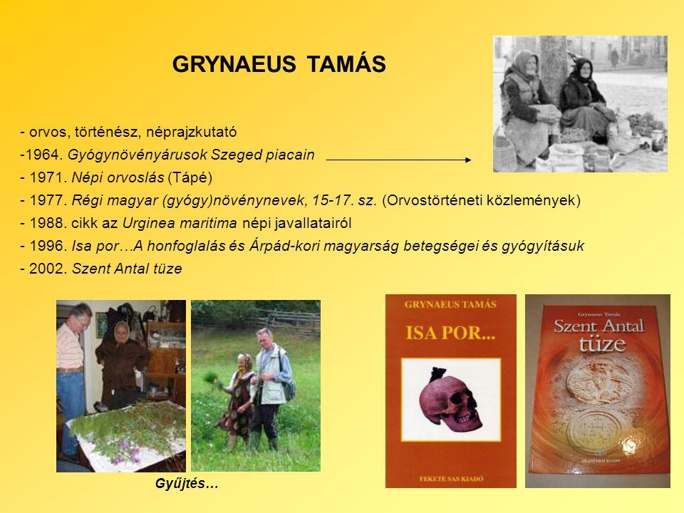 GRYNAEUS TAMÁS - orvos, történész, néprajzkutató -1964.