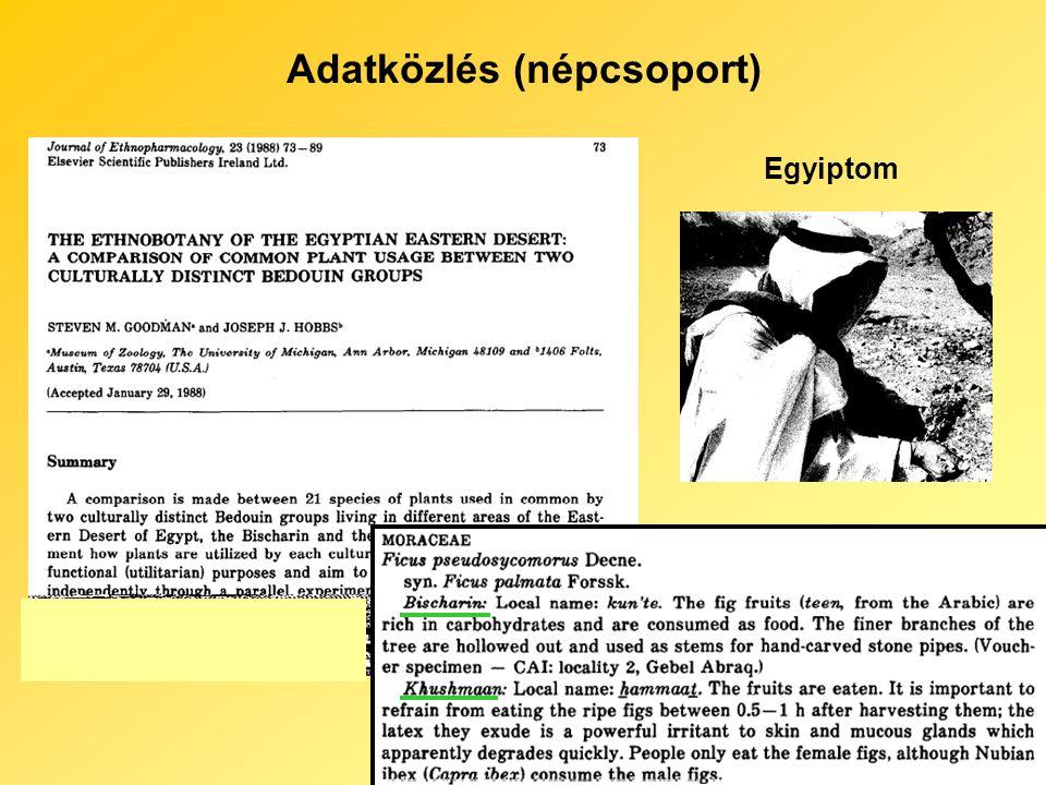 Adatközlés (népcsoport) Egyiptom
