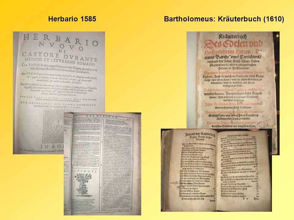 XIX – XX.század - falusi füvesemberek, javasok, kenőasszonyok, csontrakók - mágikus eljárások (pl.