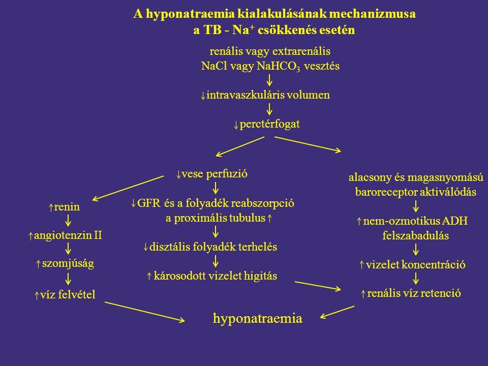 A hyponatraemia kialakulásának mechanizmusa a TB - Na + csökkenés esetén renális víz retenció renális vagy extrarenális NaCl vagy NaHCO 3 vesztés intravaszkuláris volumen renin vese perfuzió alacsony és magasnyomású baroreceptor aktiválódás károsodott vizelet higitás angiotenzin II szomjúság víz felvétel hyponatraemia GFR és a folyadék reabszorpció a proximális tubulus disztális folyadék terhelés vizelet koncentráció nem-ozmotikus ADH felszabadulás perctérfogat