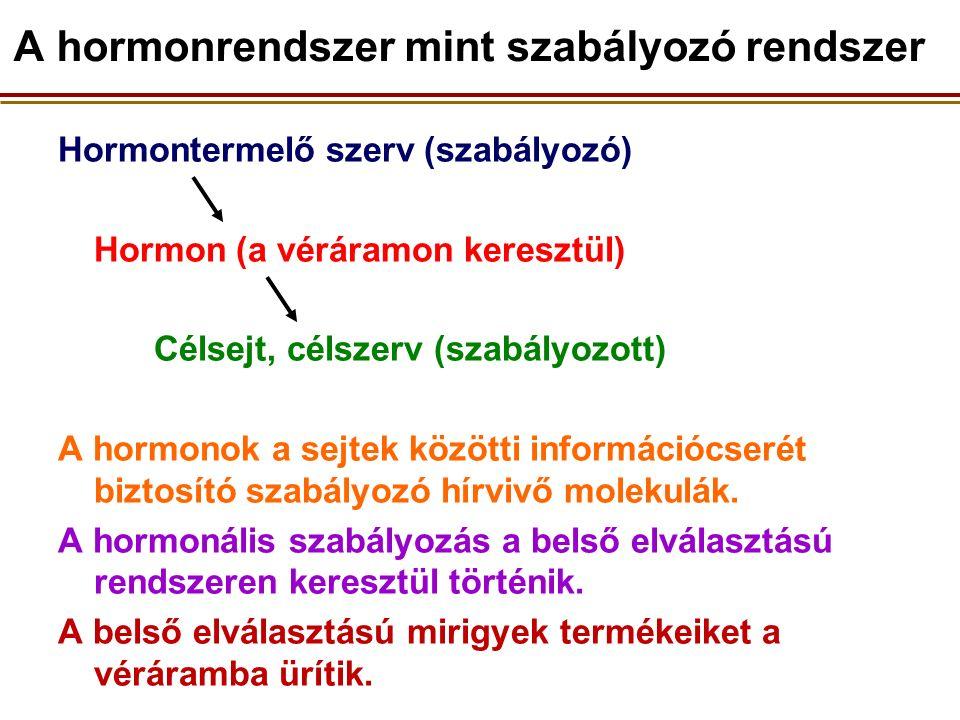Hormontermelő szerv (szabályozó) Hormon (a véráramon keresztül) Célsejt, célszerv (szabályozott) A hormonok a sejtek közötti információcserét biztosító szabályozó hírvivő molekulák.
