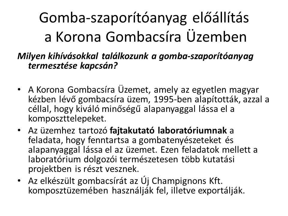 Gomba-szaporítóanyag előállítás a Korona Gombacsíra Üzemben Milyen kihívásokkal találkozunk a gomba-szaporítóanyag termesztése kapcsán.