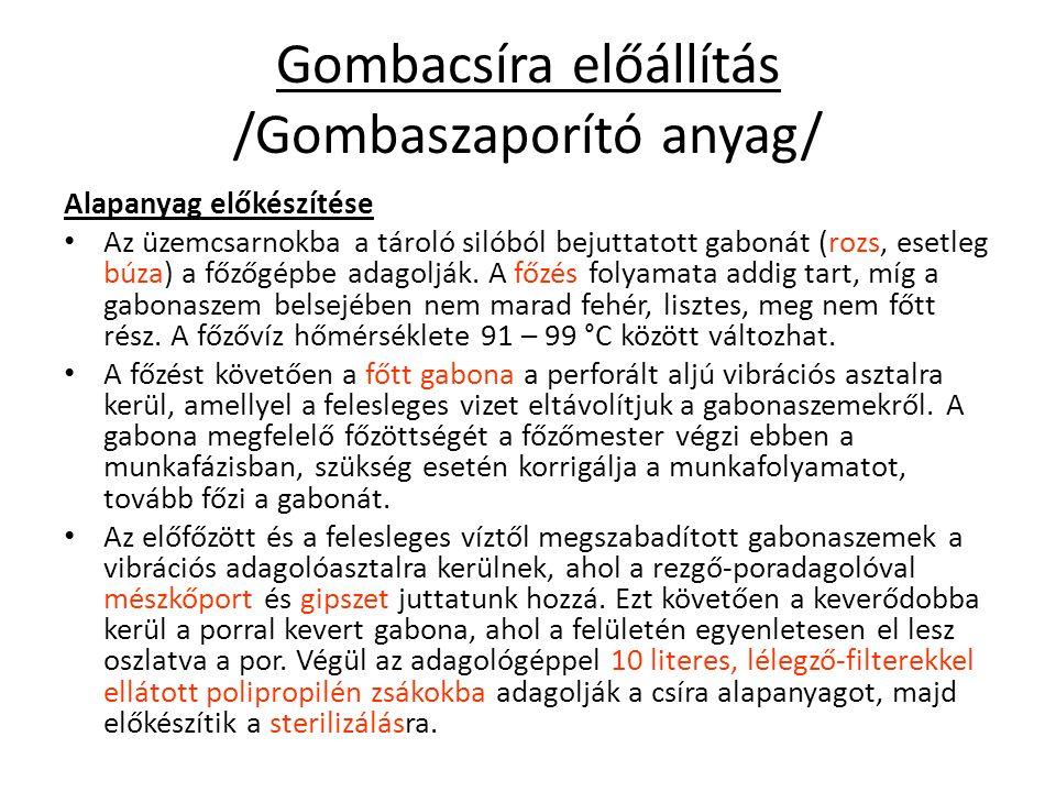 Gombacsíra előállítás /Gombaszaporító anyag/ Alapanyag előkészítése Az üzemcsarnokba a tároló silóból bejuttatott gabonát (rozs, esetleg búza) a főzőgépbe adagolják.