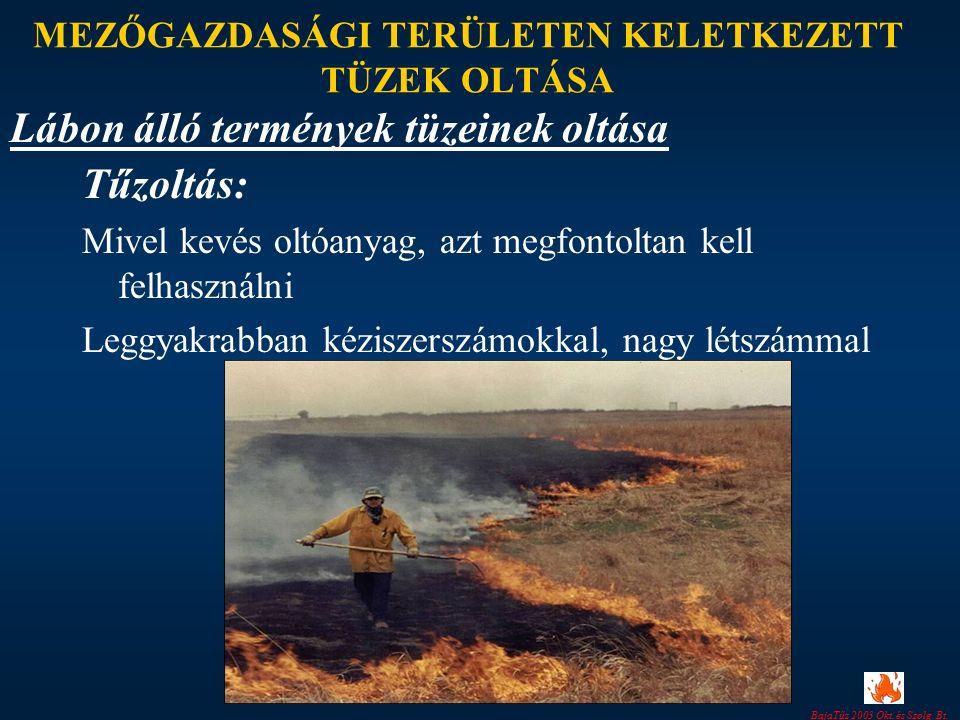 BajaTűz 2003 Okt. és Szolg. Bt. MEZŐGAZDASÁGI TERÜLETEN KELETKEZETT TÜZEK OLTÁSA Tűzoltás: Mivel kevés oltóanyag, azt megfontoltan kell felhasználni L