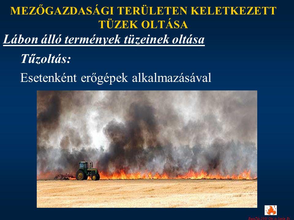 BajaTűz 2003 Okt. és Szolg. Bt. MEZŐGAZDASÁGI TERÜLETEN KELETKEZETT TÜZEK OLTÁSA Tűzoltás: Esetenként erőgépek alkalmazásával Lábon álló termények tüz