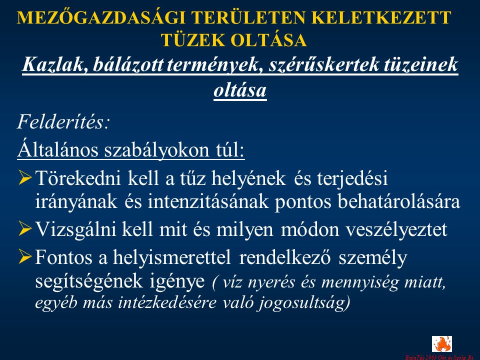 BajaTűz 2003 Okt. és Szolg. Bt.